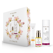 Dr. Hauschka Gift of Sleep Life