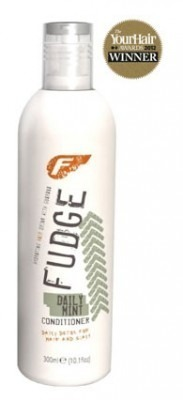 Fudge Daily Mint Conditioner 300ml
