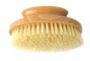 Kent Round Nail Brush - NB6